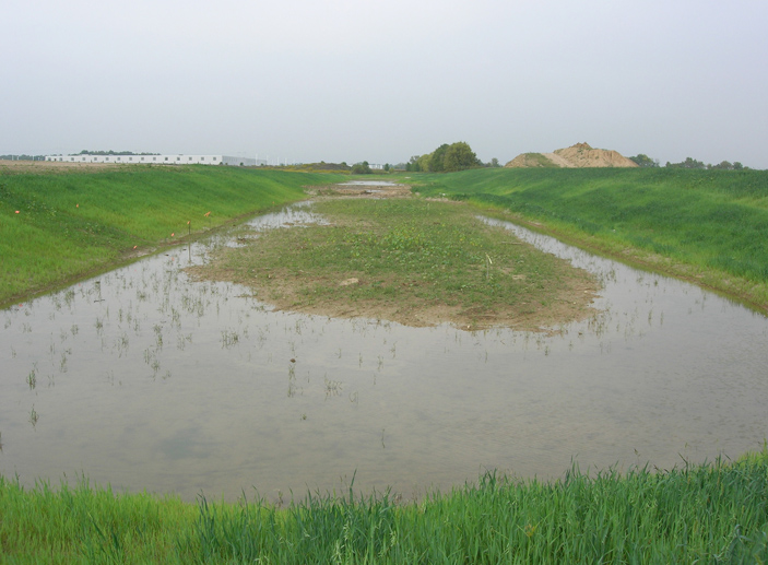 Airtech Park Pond Relocation/Wetland Delineation